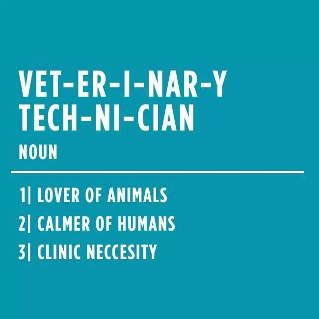 Quotes About Veterinary Technicians. QuotesGram