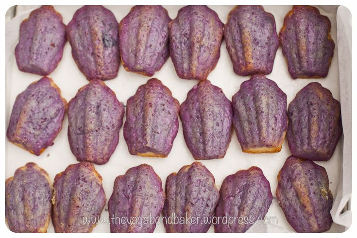 Glazed Blueberry Madeleines | Cookie Monster | Pinterest