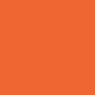 Rumba orange 2014 20 benjamin moore 213 carp paint for Benjamin moore paint colors 2014