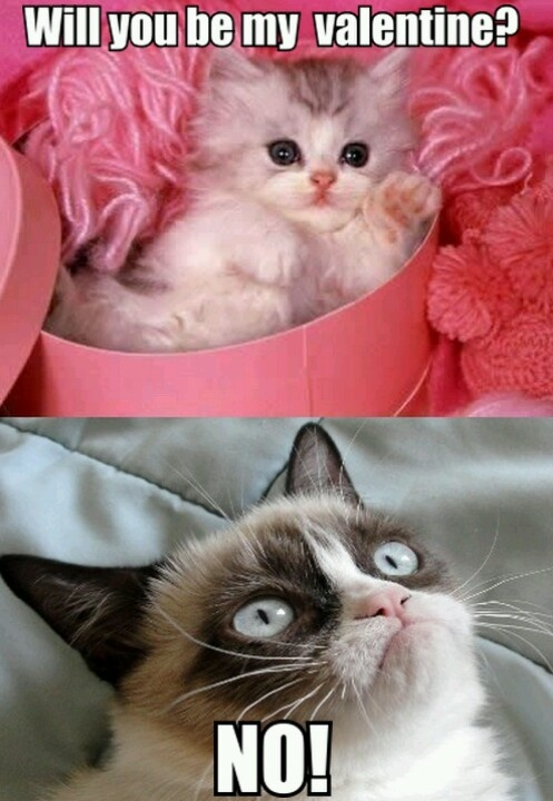 grumpy cat valentines day no one loves you