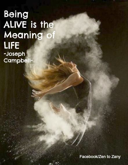 the meaning of being alive 'meaning' is a word referring to what we have in mind as 'signification', and it relates to intention and purpose 'life' is applied to the state of being alive conscious existence.