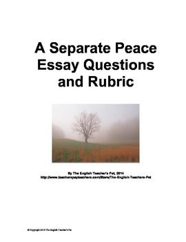an analysis of the novel a separate peace A separate peace is a coming-of-age novel by john knowles plot summary gene forrester, the protagonist, returns to his old prep school, devon.
