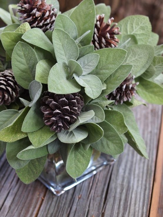 Sage pine cone centerpiece decorating ideas pinterest for Pinecone centerpieces