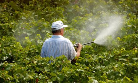 Monsanto Charged with Chemical Poisoning