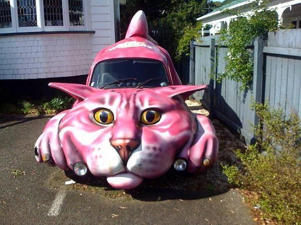 Pink Cat Car