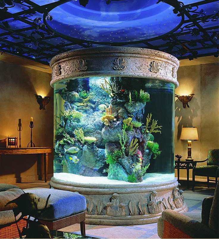 Feng shui for room with aquarium 25 interior decorating for Aquarium interior designs pictures