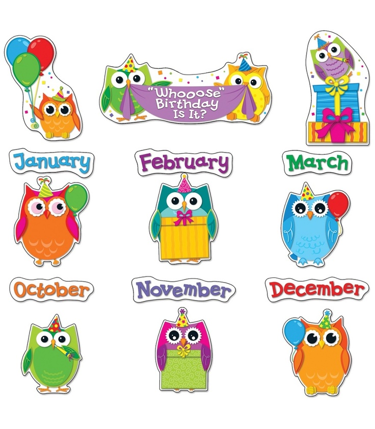 Colorful Owl Classroom Decorations : Colorful owls birthday bulletin board set classroom
