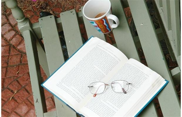 Summertime, and the reading is easy #books