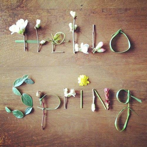 Hello Spring! Flower blossoms, rain and little green grasses remind us that winter is nearly over.