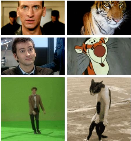 """Eccleston was a tiger and Tennant was, well, Tigger. Smith is an uncoordinated housecat who pretends that he meant to do that after falling off a piece of furniture.""  — Steven Moffat"