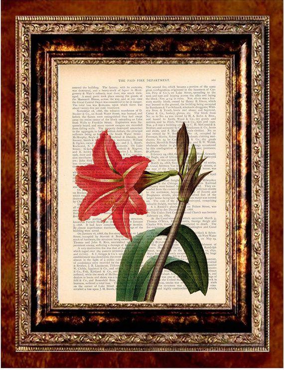 1800 flowers stock analysis