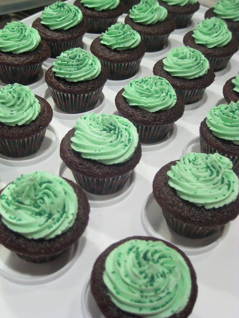 Chocolate Stout Cupcakes with Baileys Irish Cream Frosting