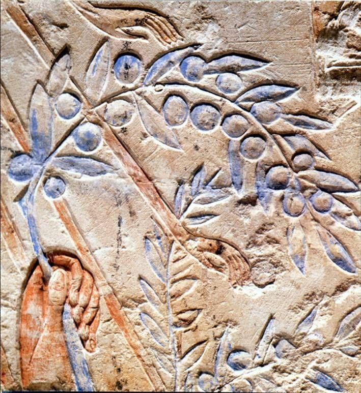 Akhenaten and the Amarna Period
