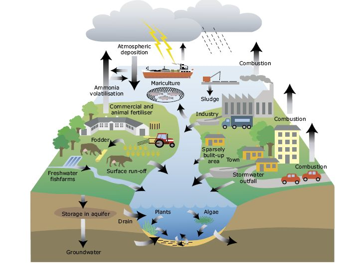 the consequences of the excessive amount of automobile emission on our health and our environment Nitrogen oxide (nox) pollution of pollutants that are considered to be harmful to health and the environment the site you are agreeing to our use of.