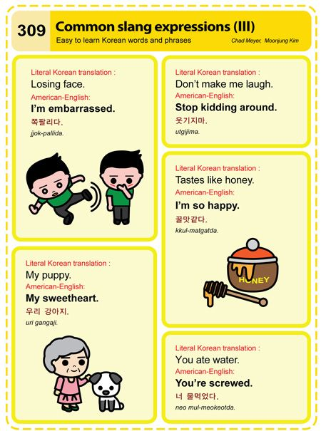 309 Learn Korean Hangul Common Slang Expressions 3