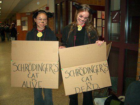 schrodinger cat costume  Found on forums.khinsider.com