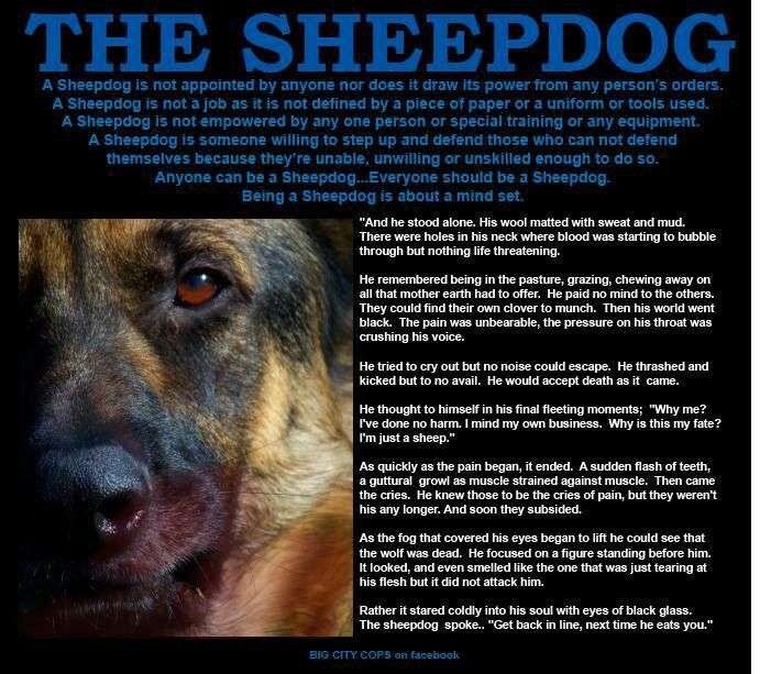293226625720541828 also Jobspapa   samthesheepdognemesisralphwolfsathigh in addition 575475658607787017 as well Scifi Paladin also Wolf And Sheep Quotes. on wolf sheep quote sheepdog
