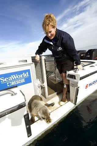 SeaWorld Animal Rescuer Jody Westberg