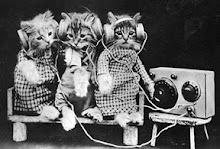 Radio Kittens