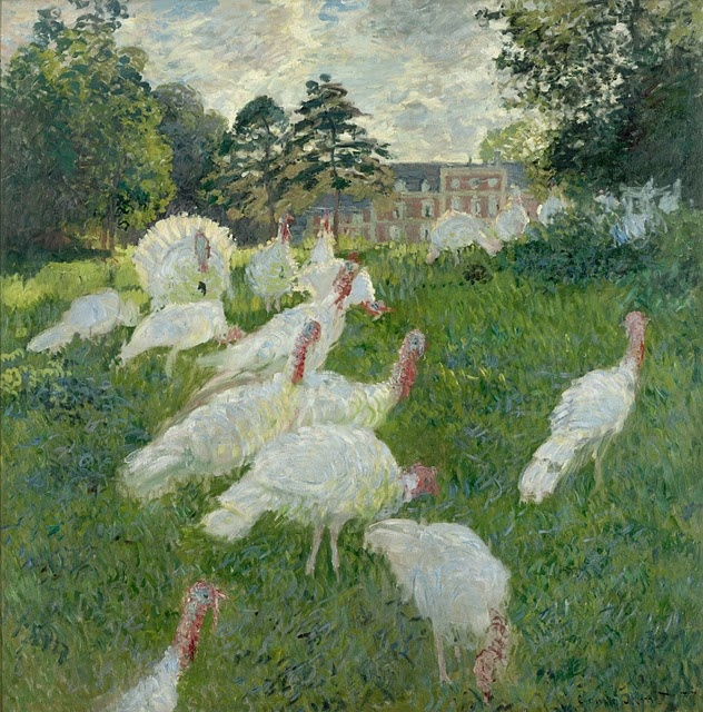 Monet les dindons (turkeys)