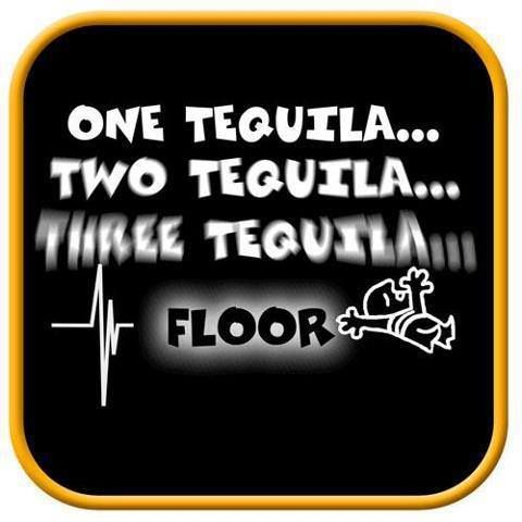 Pin by pam stanton on silly sayings pinterest for 1 tequila 2 tequila 3 tequila floor lyrics