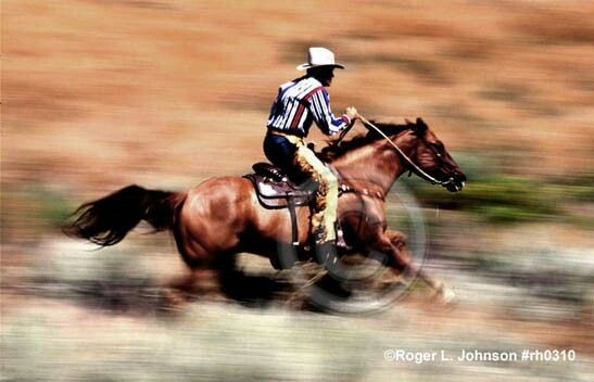 Image result for cowgirls and their horses