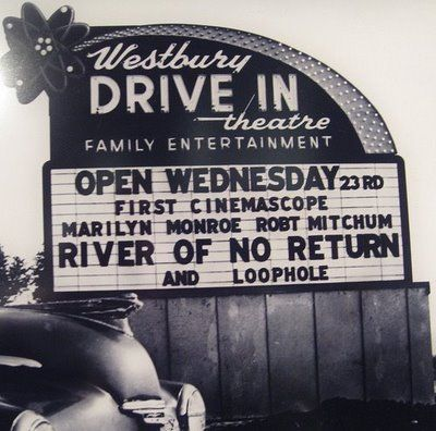 Go to a drive in theatre to see a movie
