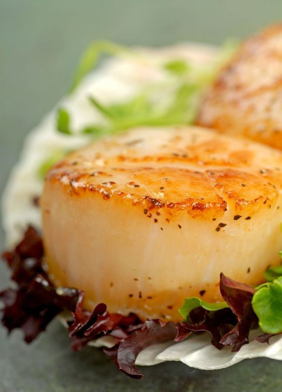 Pan-Seared Scallops with Herb Butter Sauce--Make sure the scallops are ...