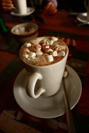 nice mug of Hot Chocolate With Marshmallows
