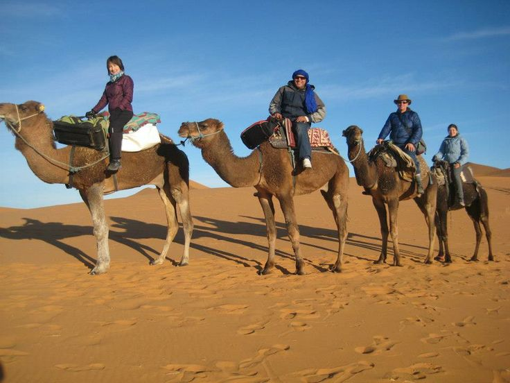 attraction review reviews nomad morocco travel tours marrakech tensift haouz region