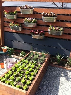 Vegetable garden with hanging planters fenced in pinterest for Hanging vegetable garden ideas