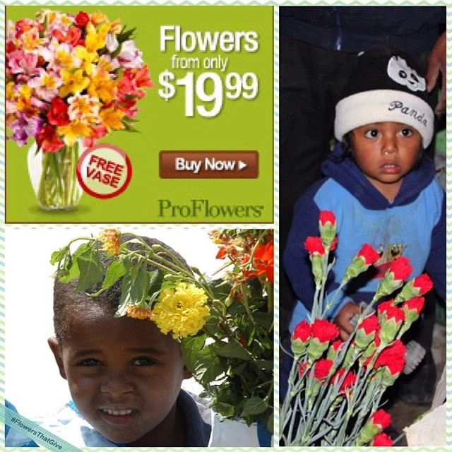 proflowers affiliate program