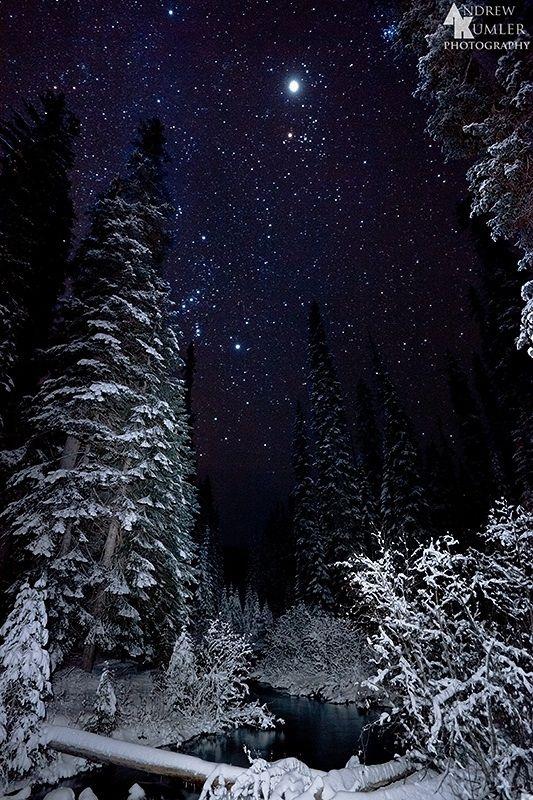 Starry Winter's Night by Andrew Kumler | Snow Day | Pinterest