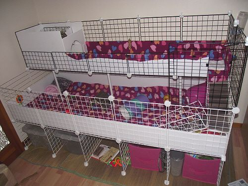 Nibbler and leila 39 s new c c cage rabbit and guinea pig for Diy c c guinea pig cage