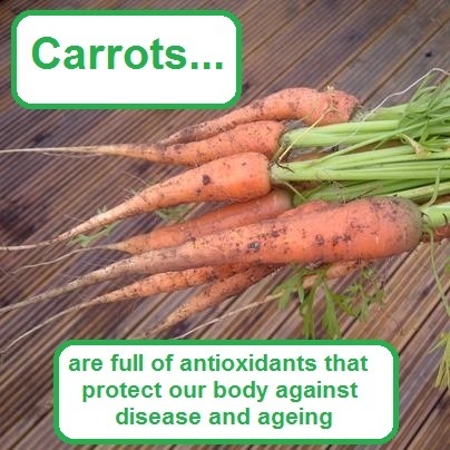 Carrots are full of antioxidants that protect our body against disease ...