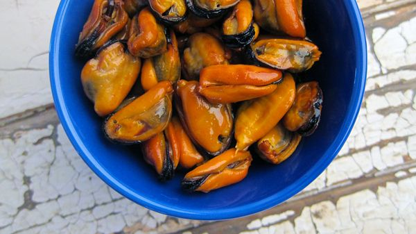How to make smoked mussels   Seafood   Pinterest