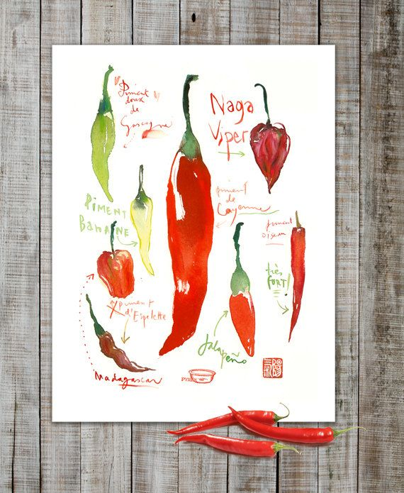Kitchen Decor Red Hot Chili Peppers Watercolor Painting 8x10 Print