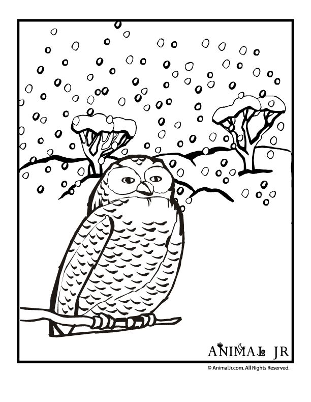 Free To Print Coloring Page