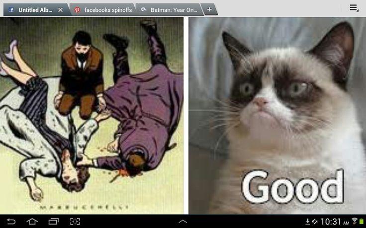 grumpy cat and batman humor pinterest