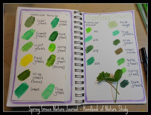 Spring nature journal idea – Spring Green from the Handbook of Nature Study.