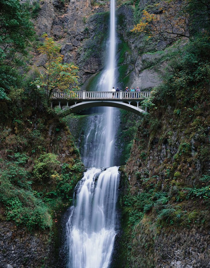 Multnomah falls oregon places to go pinterest for Where to go in oregon