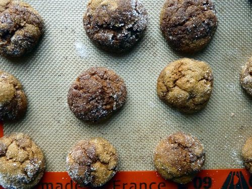 pumpkin ginger molasses cookies - needs a bit more salt and more ...