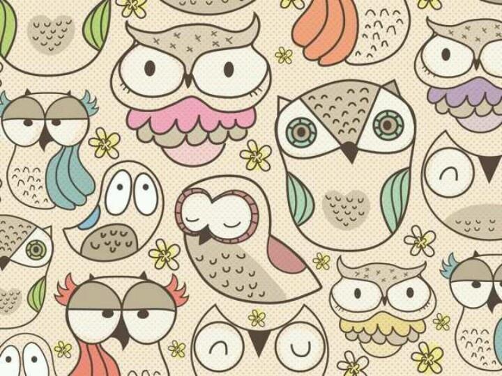 Cute Owls Hot Girls Wallpaper