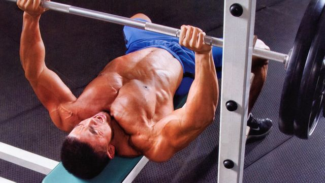 essays on strength training
