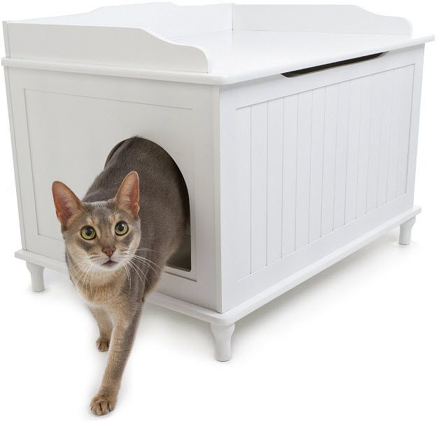 Hidden Cat Litter Box Furniture Diy Pinterest