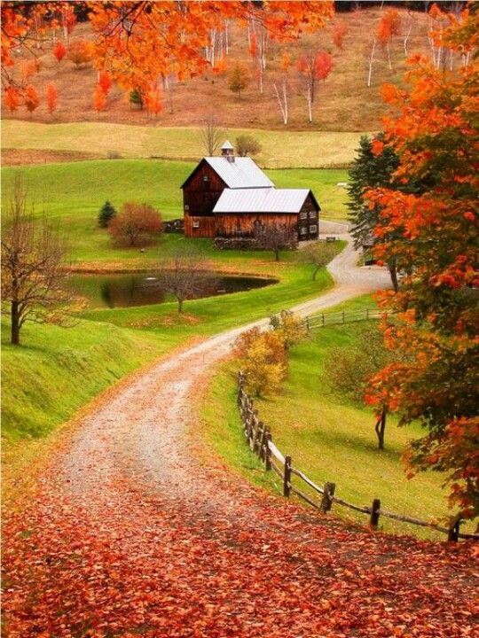 Beautiful farm in Autumn. Is this too much to ask for?