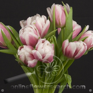 wholesale flowers atlanta ga