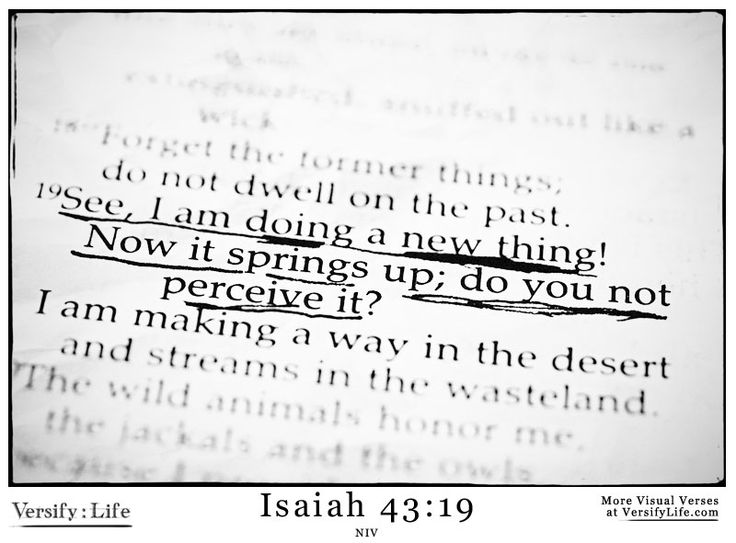 """See, I am doing a new thing!  Now it springs up; do you not perceive it?  I am making a way in the wilderness  and streams in the wasteland."" Isaiah 43:19 #bible"