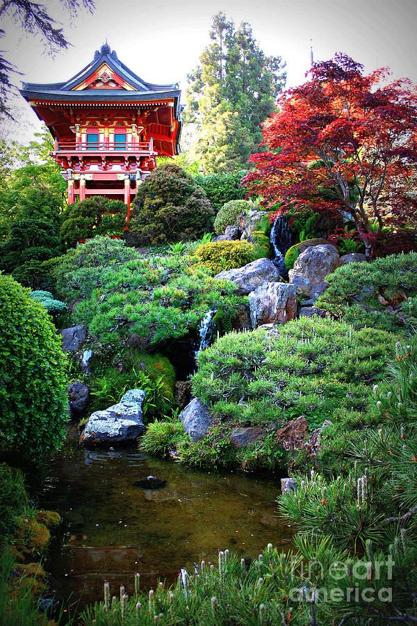 Japanese Garden With Pagoda And Pond Print By Carol Groenen