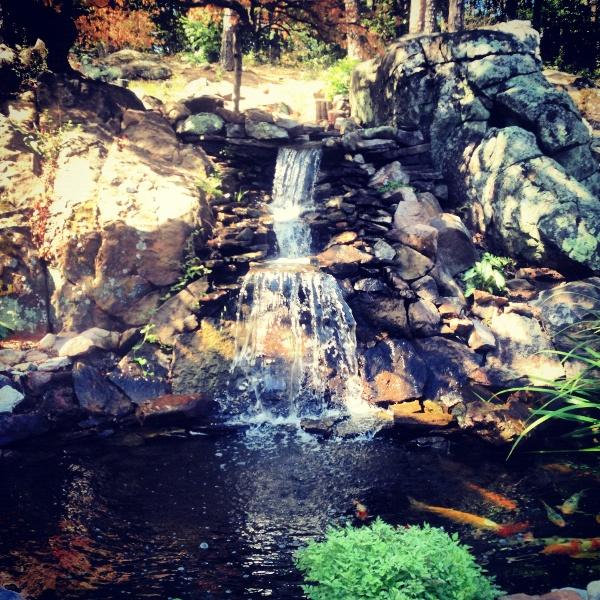 Koi pond waterfall everything pinterest for Koi waterfall